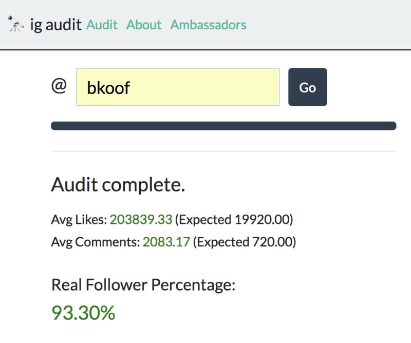 IG Audit