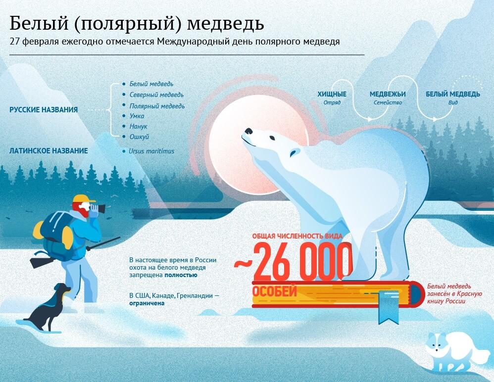 Международный день полярного медведя (27 февраля)