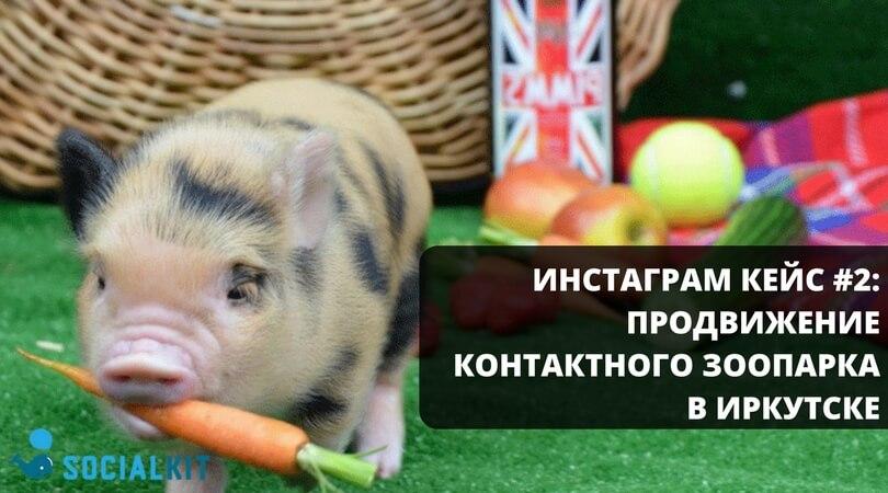 Инстаграм кейс #2: продвижение контактного зоопарка в Иркутске
