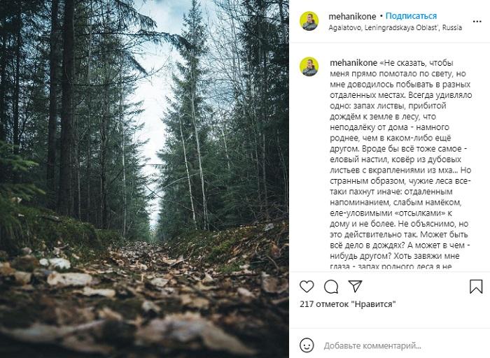 12 мая всероссийский день посадки леса
